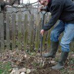 Impossible de faire pousser le moindre légume à cause de ces pierres !