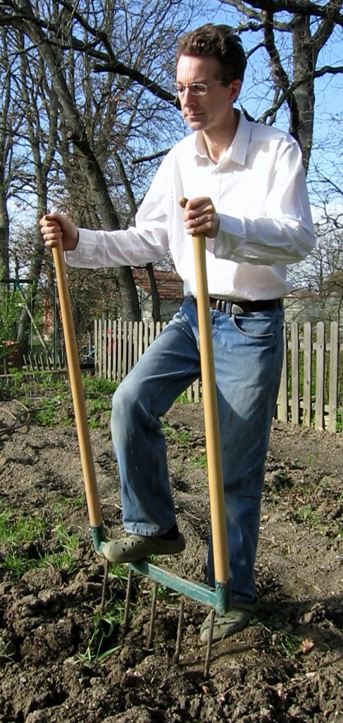Quels l gumes planter apr s les r coltes de l t - Quand planter les courgettes ...