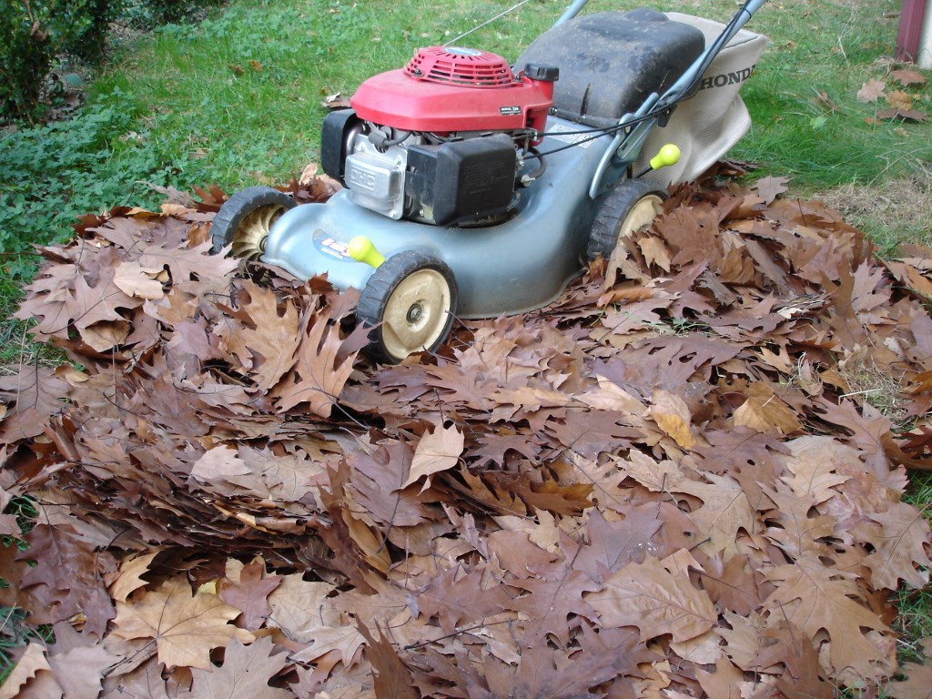 pourquoi l 39 automne est le meilleur moment pour commencer un tas de compost. Black Bedroom Furniture Sets. Home Design Ideas