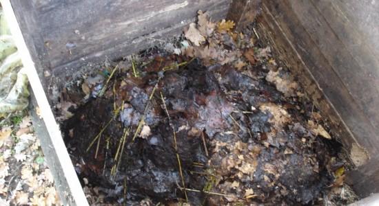 Le bac à compost va se remplir petit à petit
