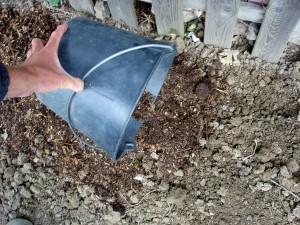 Du compost bien mûr