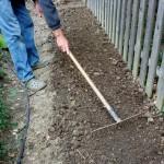 Semis en pleine terre au printemps:  3conditions pour les réussir