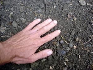 La terre s'émiette dans la main
