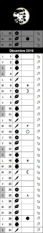Le calendrier lunaire du mois de d cembre 2016 - Calendrier lunaire decembre 2016 ...