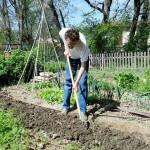 Ameublir sa terre sans la piétiner
