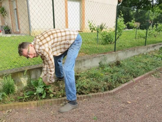 D'abord arracher les herbes indésirables