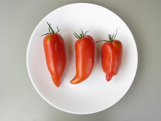 Dans l'assiette, sauriez-vous reconnaître les 3 variétés ?