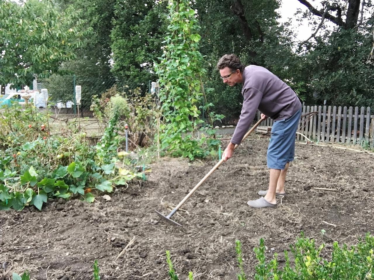 Mon semis d 39 engrais verts septembre 2016 - Engrais vert d automne ...