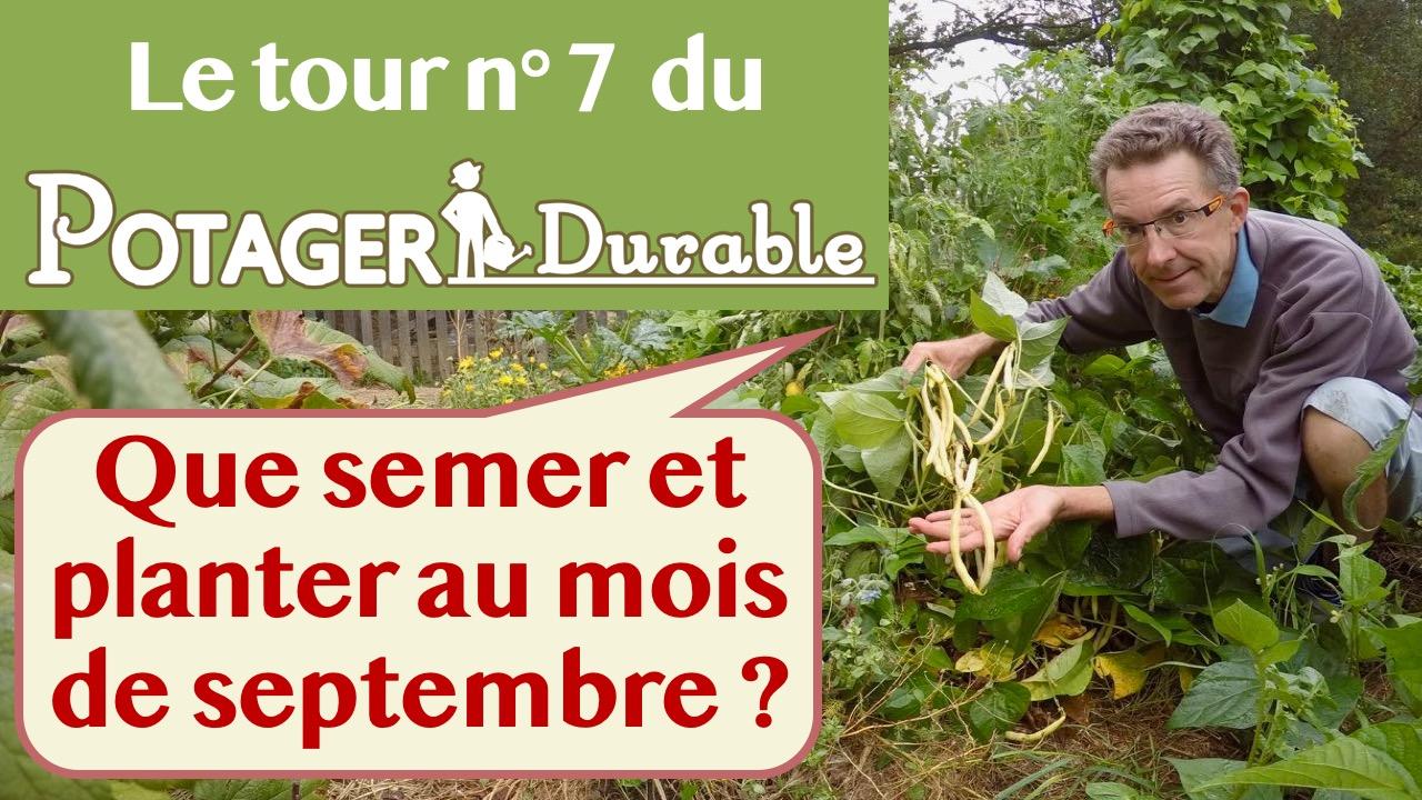 Que semer ou planter en septembre au potager • PotagerDurable.com