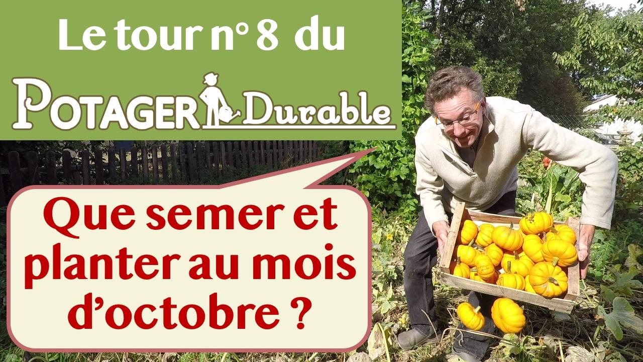Que semer ou planter en octobre au potager • PotagerDurable.com
